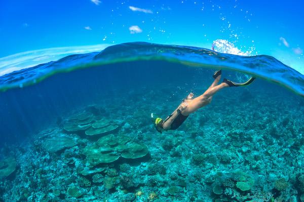 La Unua's 5-Day Komodo Cruise - Day Three - Snorkeling