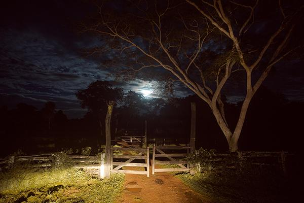 Caiman Ecolodge's 4-Day Pantanal Experience Day Two - Night Drive.