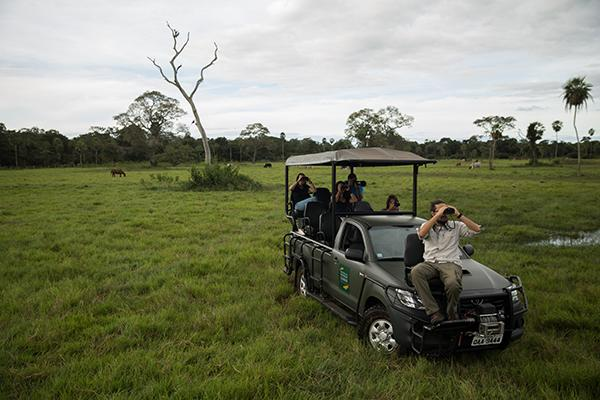 Caiman Ecolodge's 4-Day Pantanal Experience Day Two - Jeep Safari.