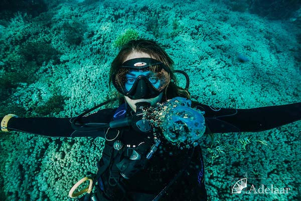 Adelaar's 12-Day Alor & The Forgotten Island: Saumlaki to Maumere - Day Ten - Diving