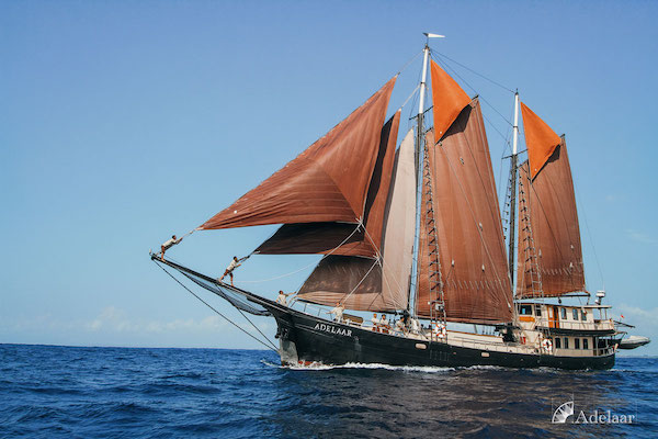 Adelaar's 12-Day Alor & The Forgotten Island: Maumere to Saumlaki - Day Five - Boat Side View