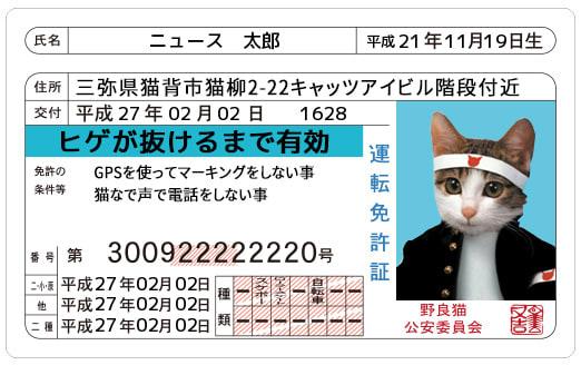 なめ猫 運転免許証