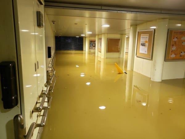 武蔵小杉の合流式下水の逆流、駅構内、うんこ