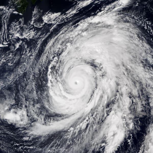 令和元年台風第19号、ハギビス