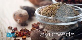 ayurveda: levenskunde