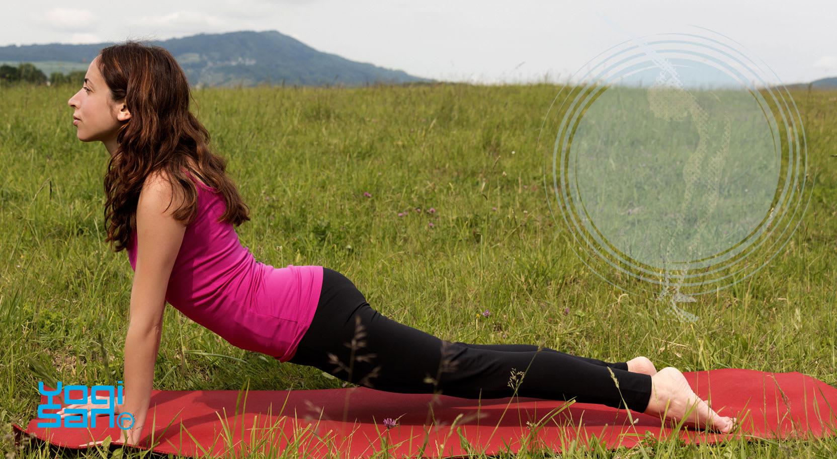 Deze houding opent en werkt verjongend, vooral op de ruggenwervel. (gratis minicursus yoga/yoga-handleiding)