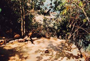 Spiritueel reisverhaal: Magisch Mexico. De bewuste meditatieplek.