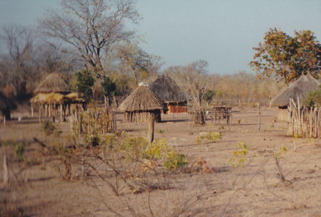 Spiritueel reisverhaal: Het nijlpaard. De 'camping'