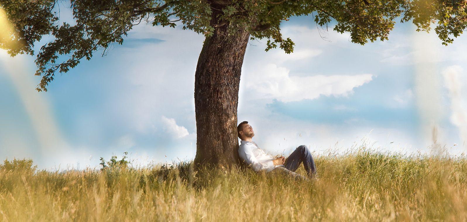 man aan het ontspannen tegen een boom