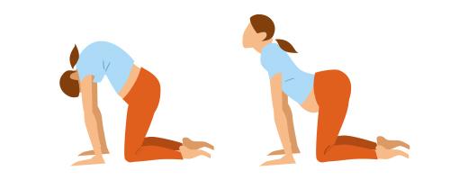 zwangerschapsyoga kat/koe yogaoefening