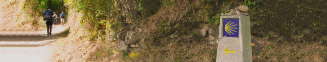 camino pelgrimstocht santiago de compostela wandelen - de Jacobsschelp