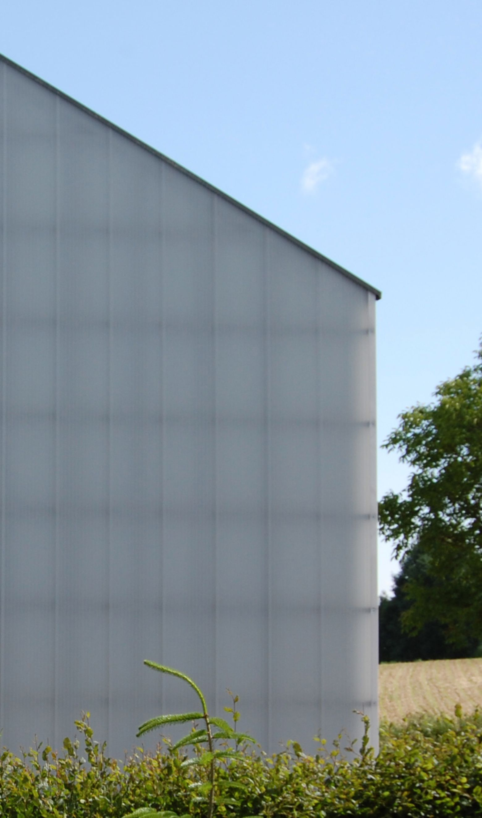 Fassade Stegplatten