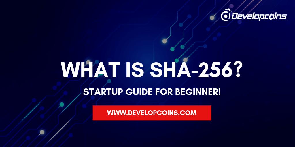 What is Secure Hash Algorithm 256?
