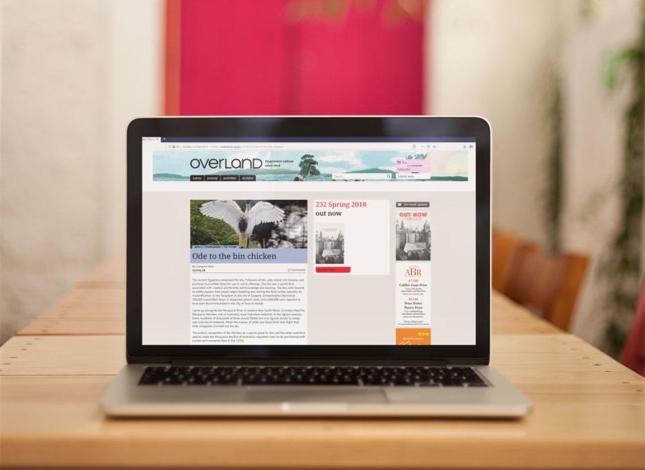 Overland ibis webpage