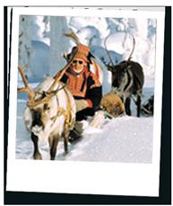 Reindeer Sleigh.png