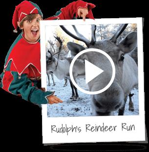 reindeer-run (2).png