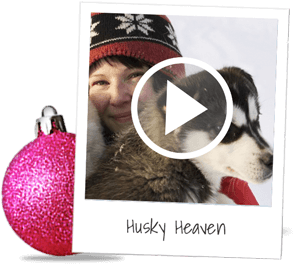 husky-heaven (1).png