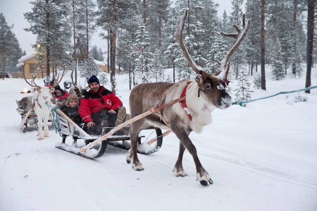Family on a sleigh pulled by reindeer