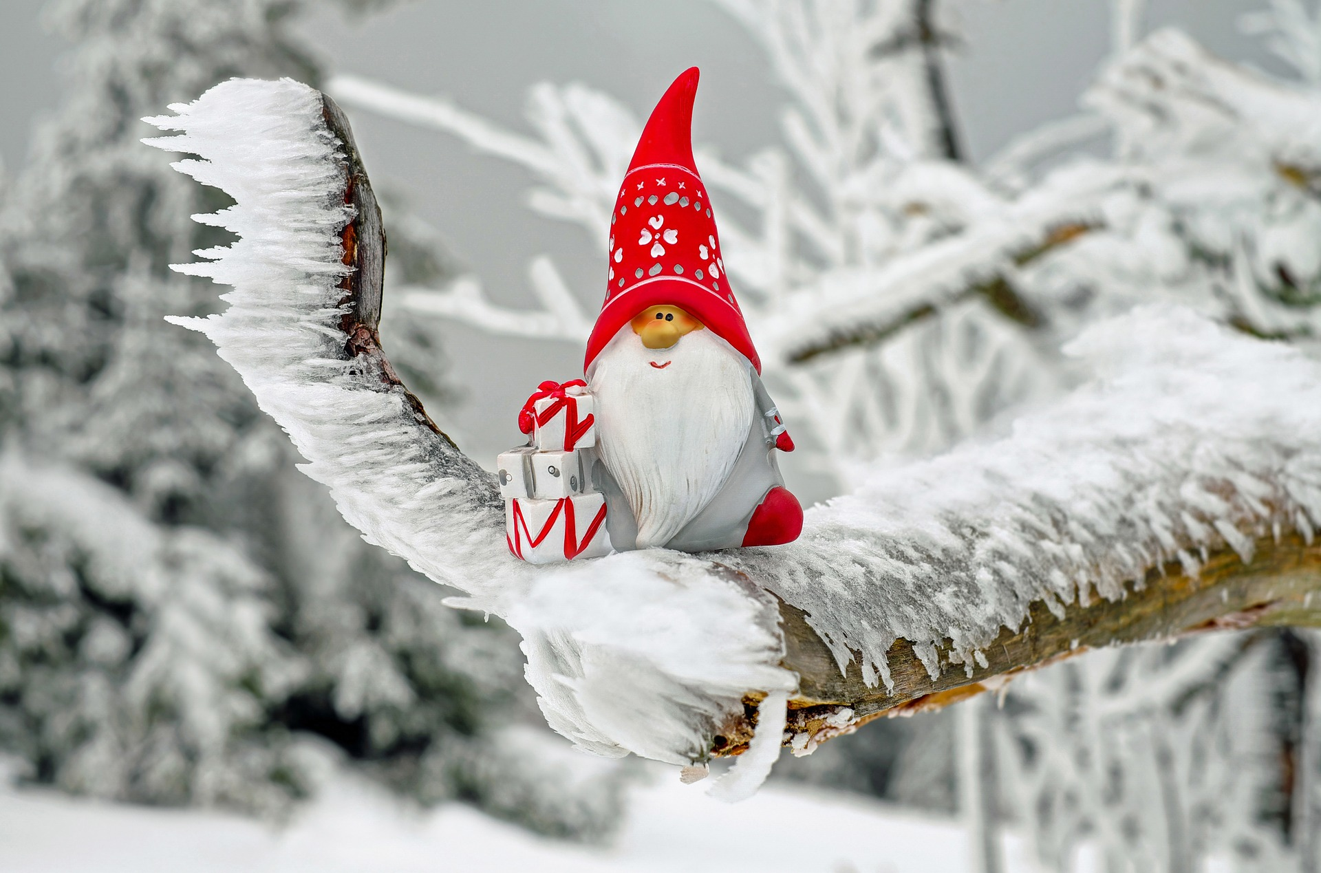 Santa ornament on a tree