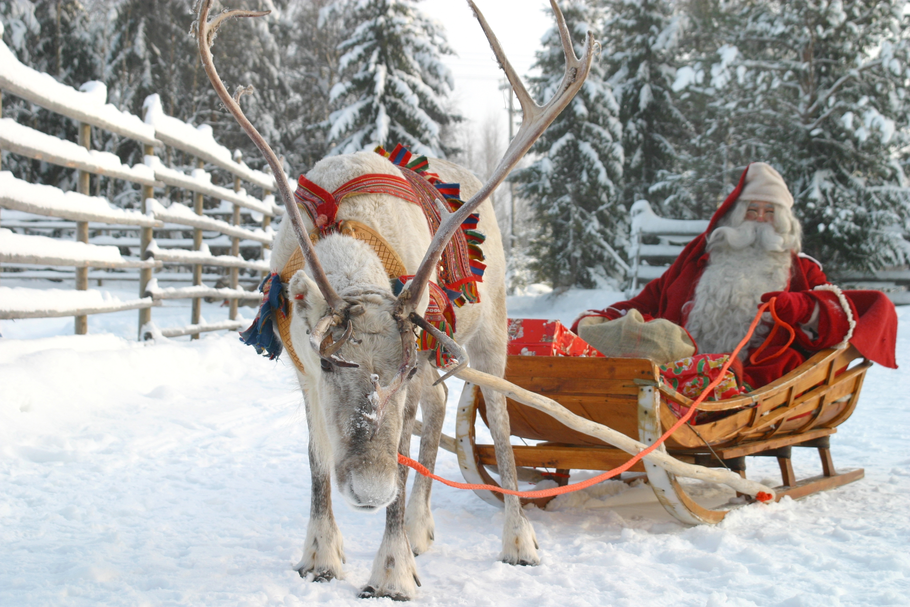 Santa on a sleigh pulled by a reindeer