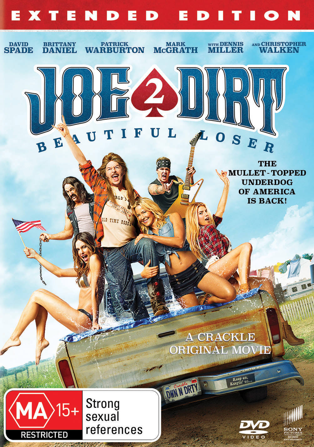 Joe Dirt 2: Beautiful Loser [DVD]