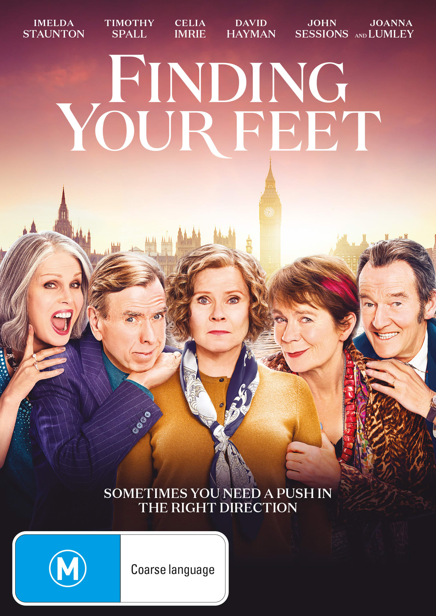 Finding Your Feet [DVD]
