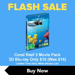 Coral Reef Flash Sale Quarter