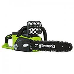Greenworks Tools 20077 - Motosega a batteria...