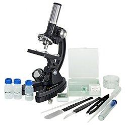 National Geographic Microscopio 300x - 1200x
