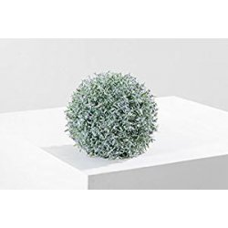 Greenball Provence, foglia lavanda con fiori...