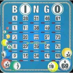 Bingo Shutterboard 1-75 Reusable Bingo Ticket