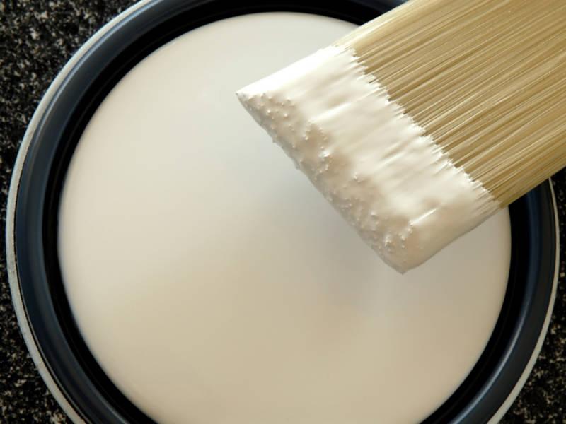 paint brush tip