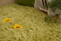 Forever Lover Ultra Soft 4.5 Cm Thick Indoor Modern Area Rugs Pads