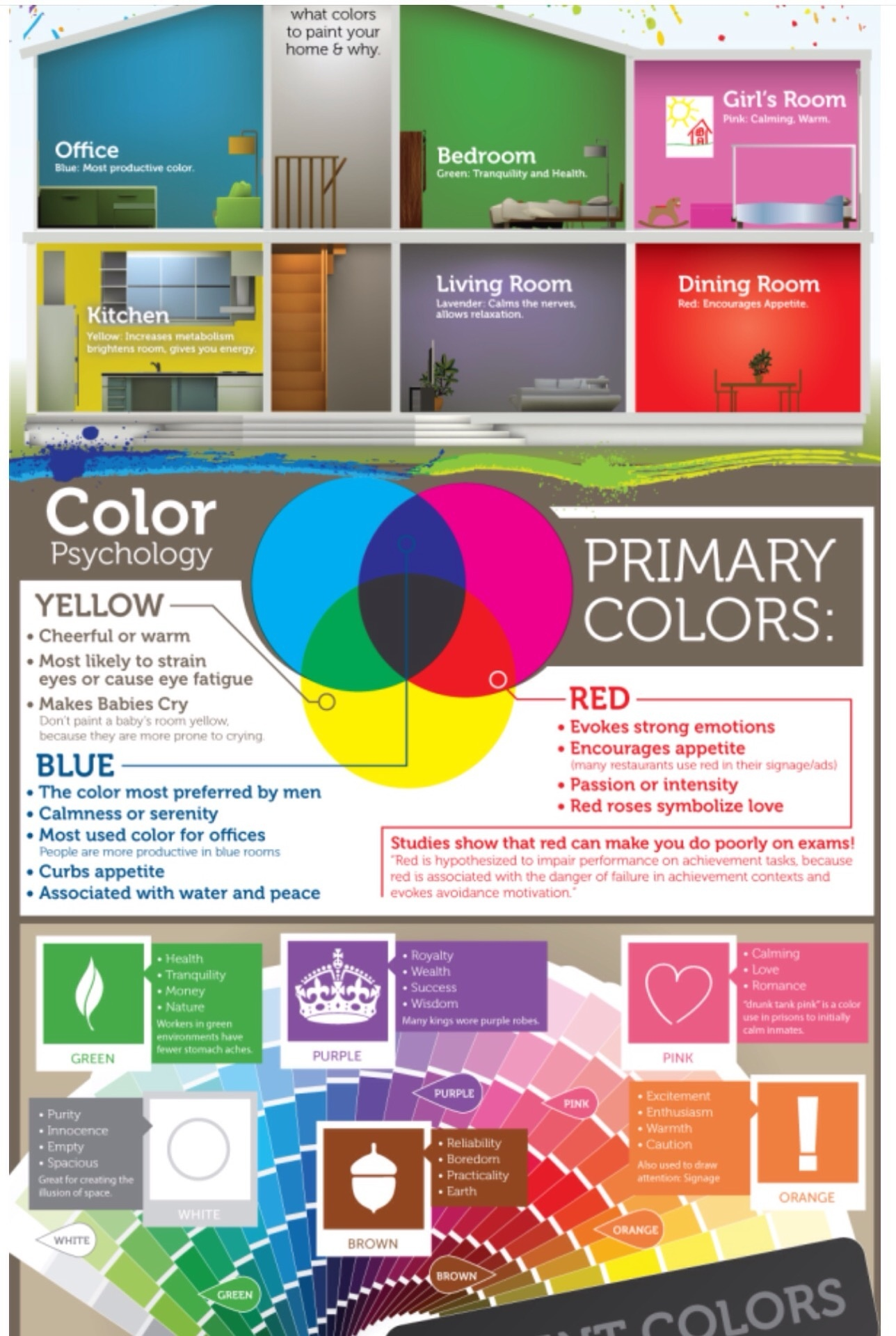 Professional Paint Tips & Tricks - How Painting A Room As Beginners - how to choose the right color Info Graph