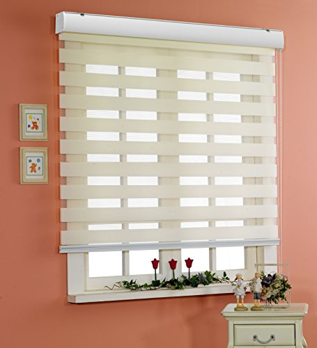 Horizontal-Window-Shade-Blind-Zebra-Dual-Roller