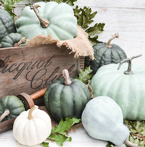 Dry Brushed Chalk Painted Pumpkins from Anderson and Grant