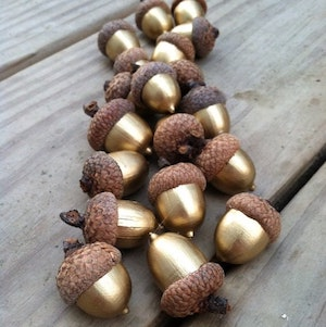 Gold Acorns (source unknown)  Great for vase fillers, in a bowl or as a table decoration
