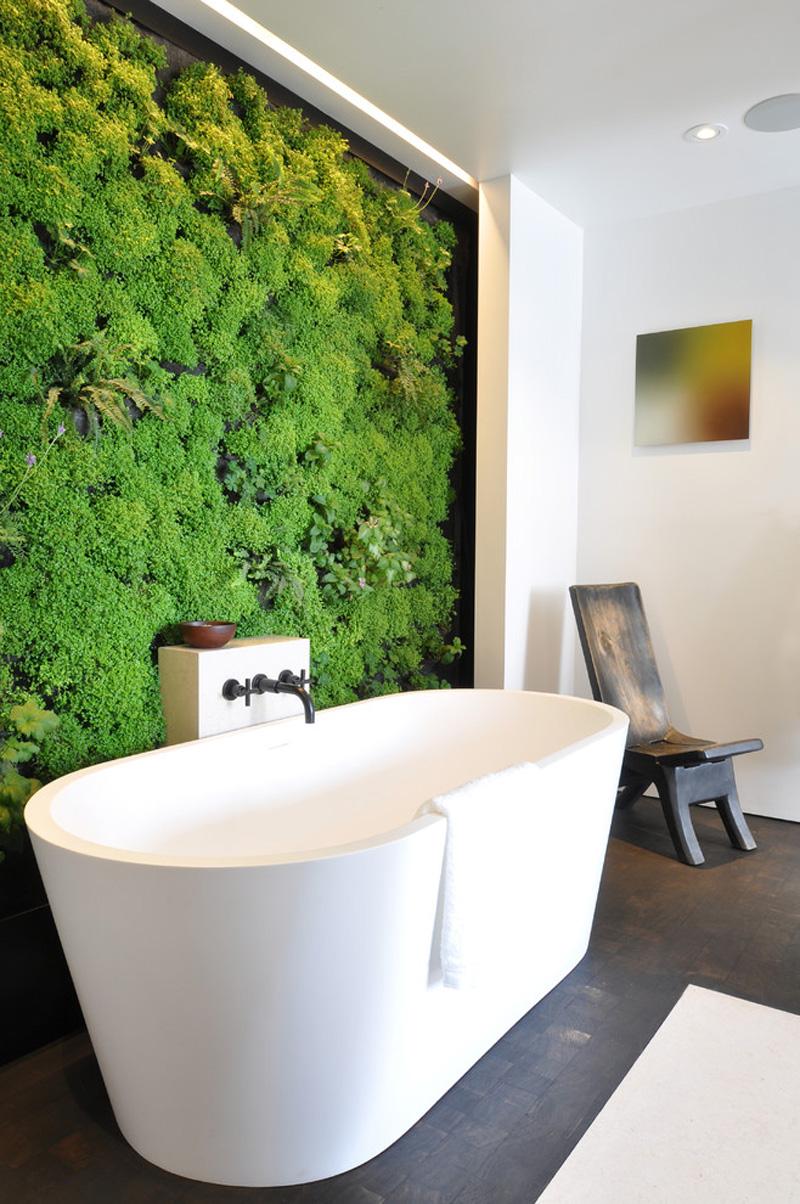 Bathroom Designs Ideas with Life Plants