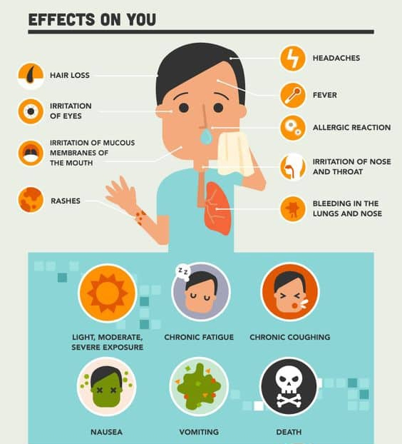 Mold effect on you infograph