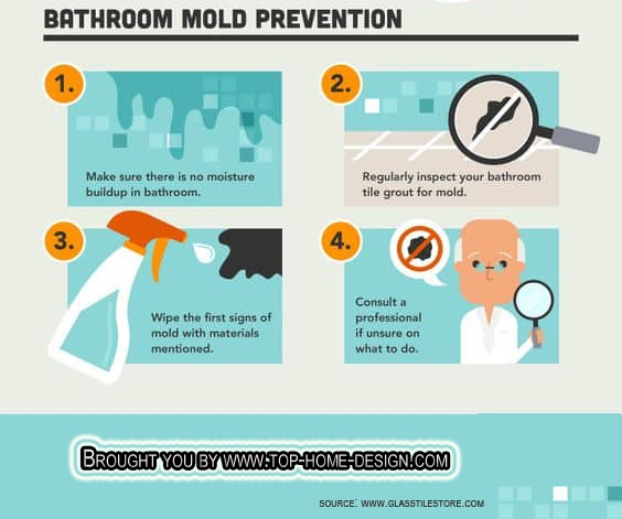Mold Prevention Infograph