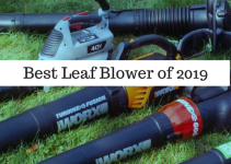 Best Leaf Blower 2019