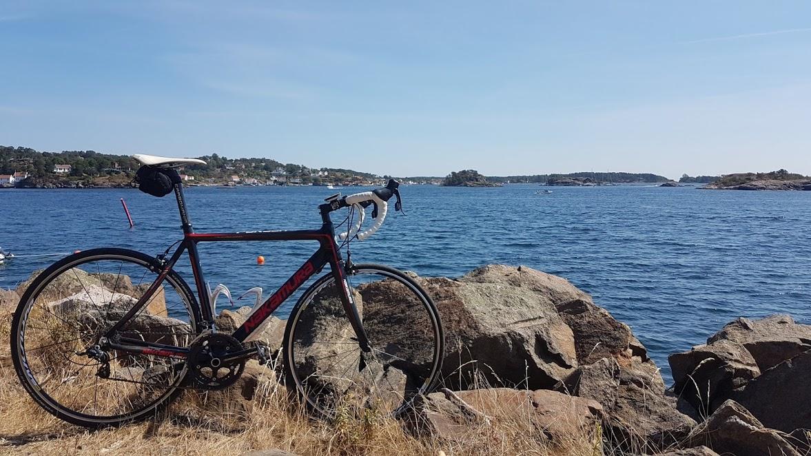 Utsikt fra Sandvigen