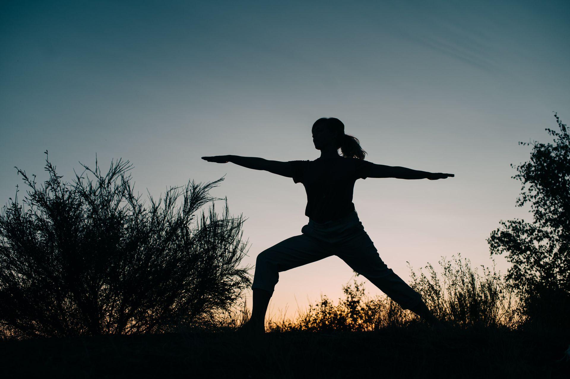 Illustration de l'article Samana yoga, l'aventure