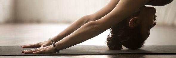 Illustration de l'article Cours de yoga en ligne - informations
