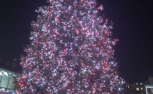 Vánoční stromeček na Vánočních trzích v Londýně
