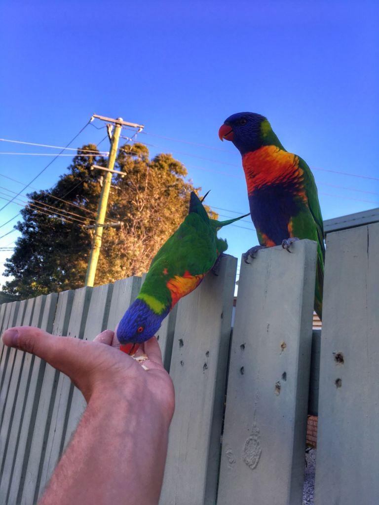 czech-us_blog_kluk-z-decina-do-australie_AU(9)