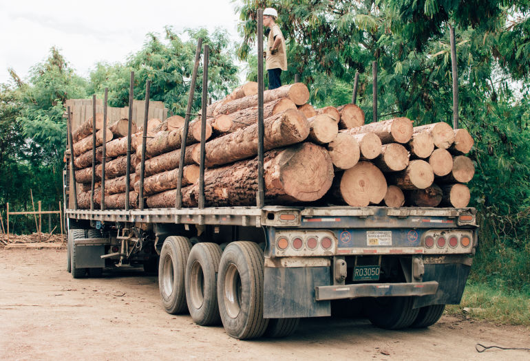 Truck loaded with logs in Colombia