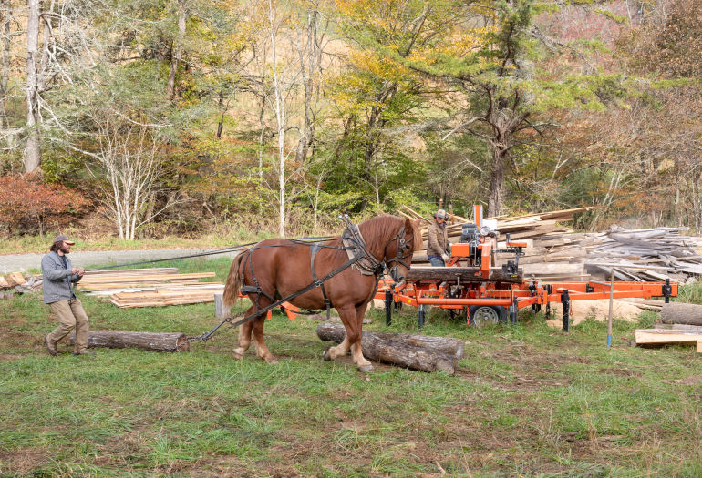 Mountain Works at sawmill site guiding horse to carry logs