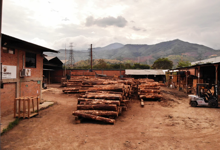 Piles of raw logs and lumber in Colombia