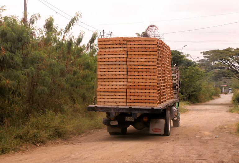 Truck loaded with pallets